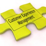 Customer Experience Management Org Chart Puzzle